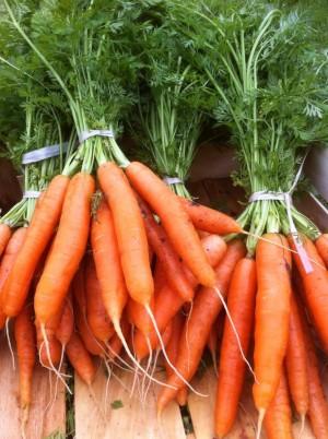Botte de carottes de France- la pièce