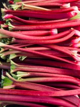 Rhubarbe de Moselle -500g