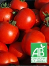 Tomates rondes Bio d'Alsace France- 1kg
