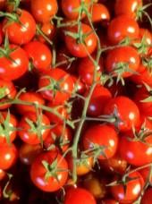Tomate cerise grappe Bio d'Italie-500g