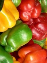 Poivrons rouges et jaunes Bio d'Espagne- 500g