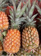 Ananas Cayenne Bio du Togo - le kg (cueilli mûr)