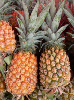 Ananas Bio du Togo - le kg (avion, cueilli mûr)