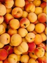 Abricot confiture Bio de France - 1 kg