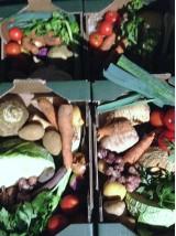 Cagette de légumes Bio de saison, soupe ou petits pots pour bébé