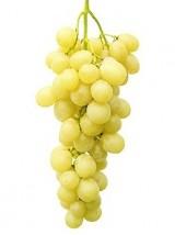 Raisin Blanc Bio Italia Salamita d'Italie- 1kg