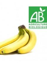 Banane Bio Cavendish de la République Dominicaine- le kg