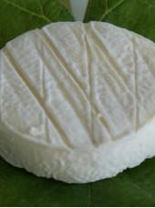 Cabécou Bio au lait de chèvre de la Vallée du Tarn- la pièce