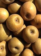 Pomme reine des reinettes Bio de France-1kg