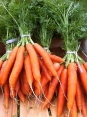 Botte de carottes Bio d'Italie- la pièce
