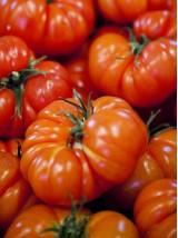 Tomate coeur de Boeuf Bio de Moselle