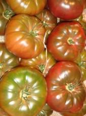 Tomate noire ancienne Bio de France - 500g  (population, non hybride)
