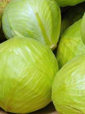 Chou blanc Bio Alsace France-le kg