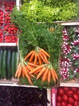 Panier gastronomique de fruits et légumes bio et de saison