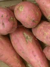 Patate douce Bio Espagne -500g